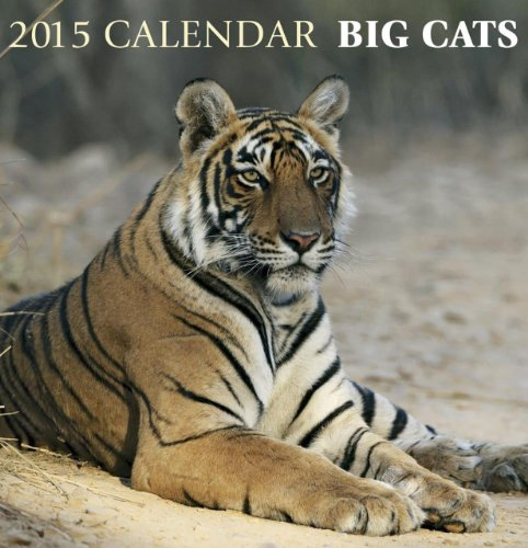 2015 Calendar: Big Cats: 12-Month Calendar Featuring Wonderful Photography and Space in Write in Key Events