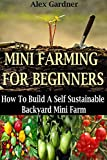 img - for Mini Farming For Beginners: How to Build A Self Sustainable Backyard Mini Farm book / textbook / text book