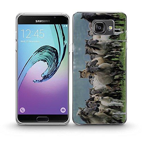 Pferde 10005, Wildpferde, Das Kristallklare Ultradünn Gel Crystal Silikon Handyhülle Schutzhülle Handyschale mit Farbig Design für SAMSUNG A5 2016