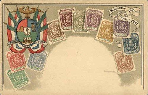 Souvenir-of-the-Transvall-South-Africa-Original-Vintage-Postcard