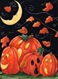 Toland Home Garden Scary Night 28 x 40-Inch Decorative USA-Produced House Flag