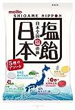 名糖産業 塩飴 日本 90g×10個
