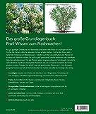 Image de Das große BLV Handbuch Schnitt: Obst- und Ziergehölze - Rosen - Stauden