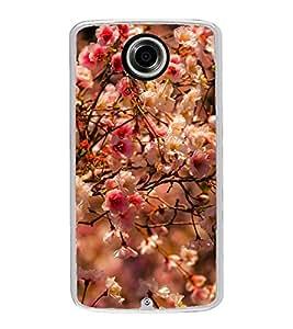 Spring Flowers 2D Hard Polycarbonate Designer Back Case Cover for Motorola Nexus 6 :: Motorola Nexus X :: Motorola Moto X Pro :: Motorola Google Nexus 6