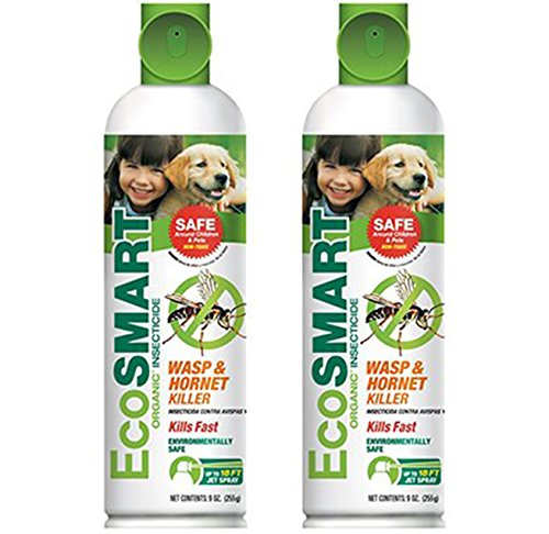 2-pack-ecosmart-organic-wasp-and-hornet-killer