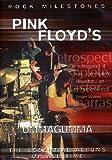 Pink Floyd's Ummagumma