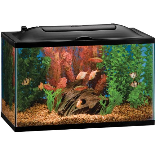 Fish tank decorations 100 gallon tank for 20 gallon fish tank kit
