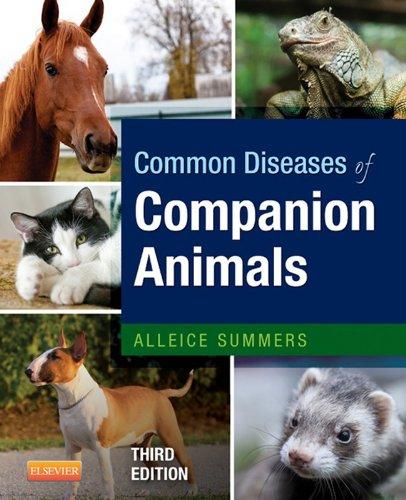 Buy Companion Animals Now!