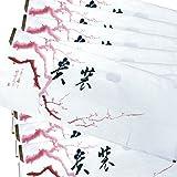 たとう紙 10枚セット 折らずに発送 雲竜和紙 梅柄 きもの用 文庫紙 着物
