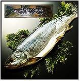 北海道産 銀毛 新巻鮭1本化粧箱入れ(2~2.3kg) お歳暮・ご贈答に・ご自宅用に(送料税込み)