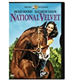51OibqRJUmL. SL160  National Velvet