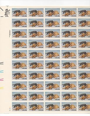 Cat and Dog in Snow Sheet of 50 x 13 Cent US Postage Stamps NEW Scot 2025
