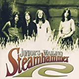Junior's Wailing By Steamhammer (2000-11-13)