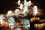 Nexium 3M Blue Rattan String Lights Patio Wedding and Party Decoration(20pcs/set)