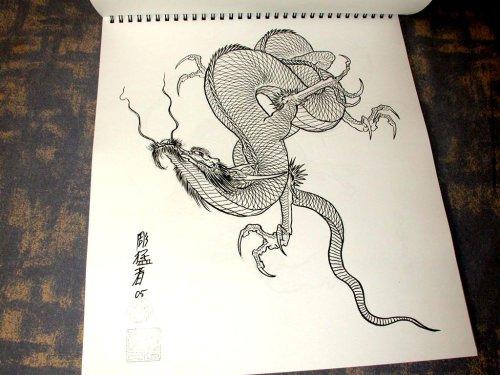 Tattoo designs books 100 dragons dragon tattoo designs for Dragon tattoo book