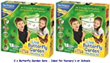 Insect Lore Butterfly Garden x 2 Packs