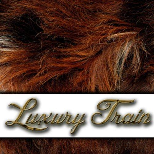 luxury-train-explicit