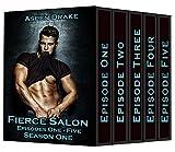 Fierce Salon Season One Box Set: A New Adult Smexy Serial