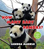 img - for How Many Baby Pandas? book / textbook / text book
