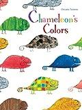 Chisato Tashiro Chameleon's Colors