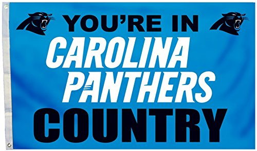 Carolina Panthers Official NFL 3'x 5' Banner Flag by Fremont Die