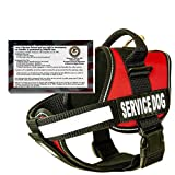 """barkOutfitters Dog Vest Harness with 50 ADA Cards Kit, (22"""" - 28"""") Girth, Red"""