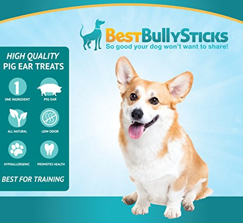 usa pig ears by best bully sticks 20 pack thick cut all natural dog treats. Black Bedroom Furniture Sets. Home Design Ideas