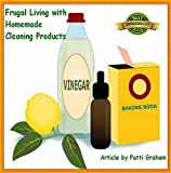 img - for Frugal Living with Homemade Cleaning Products book / textbook / text book