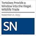 Tortoises Provide a Window into the Illegal Wildlife Trade | Sarah Zielinski