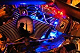 Blue 8 PC LED Neon Motorcycle Lighting Kit
