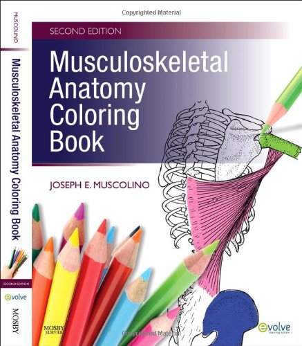 Anatomy Coloring Book 2nd Edition : Squidoo page not found