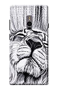 One Plus 2 Back Cover, Premium Quality Designer Printed 3D Lightweight Slim Matte Finish Hard Case Back Cover for One Plus Two by Tamah