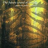 Future Sound Of London Papua New Guinea: Translations