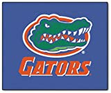 Fanmats 4155 University Of Florida Tailgater Rug