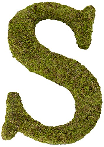 Lillian Rose Moss Letter for Home Decor, 15-Inch, Monogrammed S