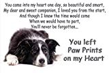 Border Collie sheepdog pet loss bereavement Fridge Magnet Gift - You left Paw Prints on my Heart