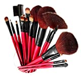 51OokvHhRmL. SL160 SHANY Professional 13 Piece Cosmetic Brush Set with Pouch, Set of 12 Brushes and 1 Pouch, Red