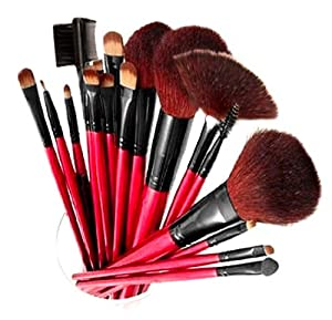 Shany Professional 13-piece Cosmetic Brush Set With Pouch