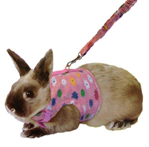 Oferta arn s pretal para conejos cobayas y chinchillas pet shop tribal ex ticos - Juguetes caseros para conejos ...