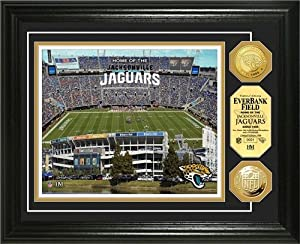 Jacksonville Jaguars Framed EverBank Field Gold Coin Photo Mint by Hall of Fame Memorabilia
