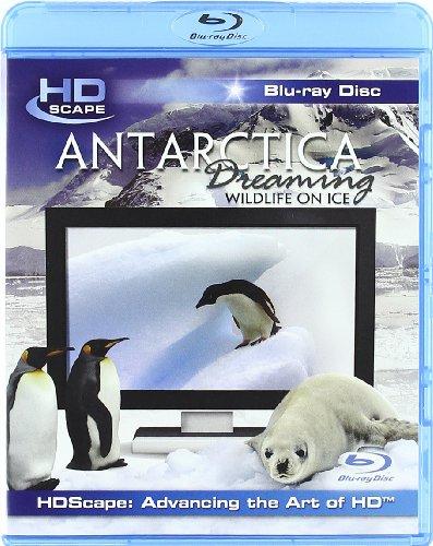antarctica-dreaming-wildlife-on-ice-edizione-regno-unito