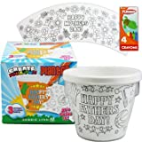 6 Set of Plastic Coloring (Create Your Own) Flower Pots with Crayons
