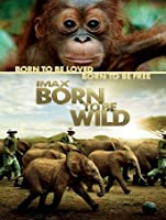 IMAX: Born to Be Wild [HD]