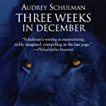 Three Weeks in December | Audrey Schulman