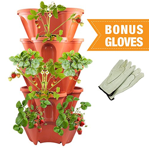 Five Tier Stackable Planter by Sue's Garden - Terra Cotta Appearance - Grow Strawberry or Other Plants in Very Small Space - Includes BONUS Leather Gloves (Resin Potting Bench compare prices)