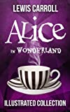img - for Alice in Wonderland: The Complete Collection (Illustrated Alice's Adventures in Wonderland, Illustrated Through the Looking Glass, plus Alice's Adventures Under Ground and The Hunting of the Snark) book / textbook / text book