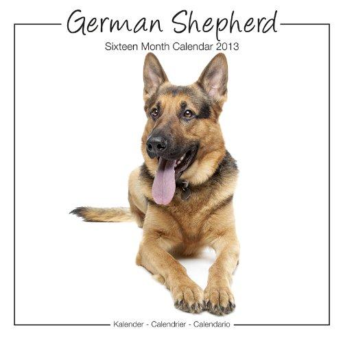 German Shepherds 2013 Wall Calendar