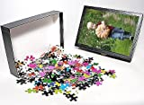 Photo Jigsaw Puzzle of Young Boy - carry...