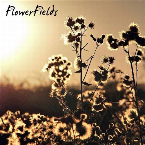 Silverlights [Flowerfields]