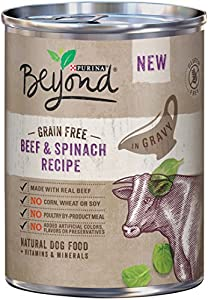 Purina Beyond Wet Dog Food, Grain Free, Beef & Spinach Recipe, 12.5-Ounce Can, Pack of 12
